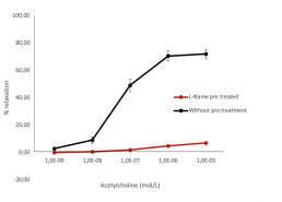 Concentration response curve with acetylcholine In the presence or absence of L-Name